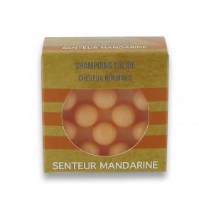 Shampoing solide avec picots - Blancs cheveux secs2937